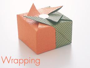 Wrap01